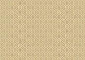 Обои Loymina Amber Salon AS3 004/1
