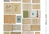 Обои NLXL Biblioteca EKA-07