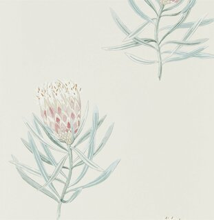 Обои Sanderson Art Of The Garden 216330